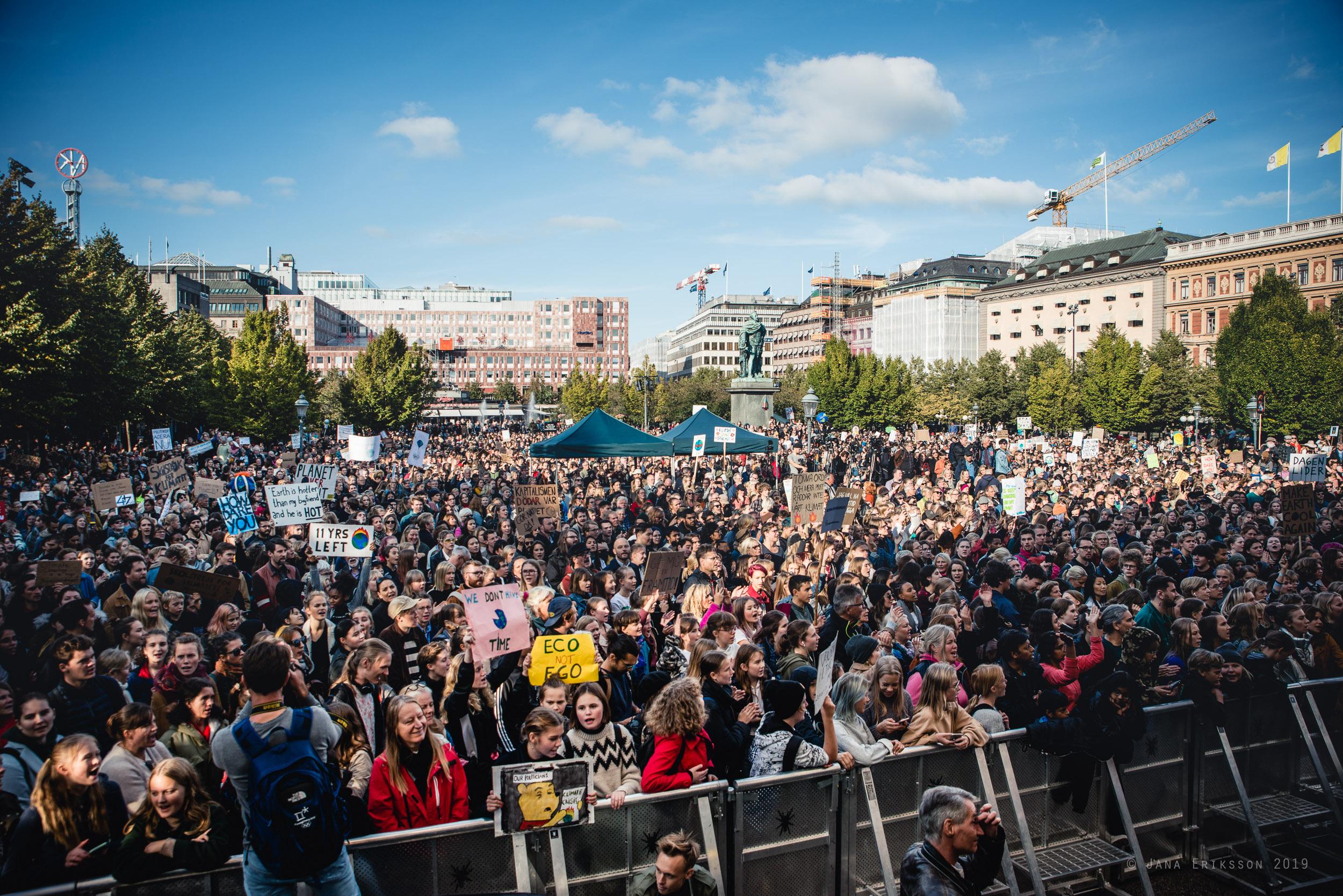 Hav av demonstranter i Kungsträdgården. Klimatstrejk 27 september 2019.